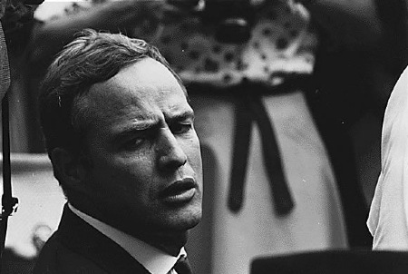 All about Brando
